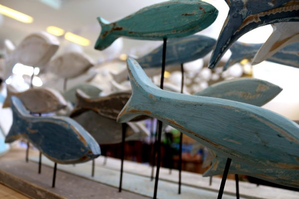 fish hoek craft market | pure photography copyright